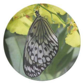 ペーパー凧の蝶プレート プレート