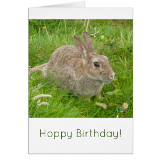 ホップの豊富な誕生日! かわいいバニーウサギのバースデー・カード カード