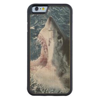 ホホジロザメの頭部 CarvedメープルiPhone 6バンパーケース
