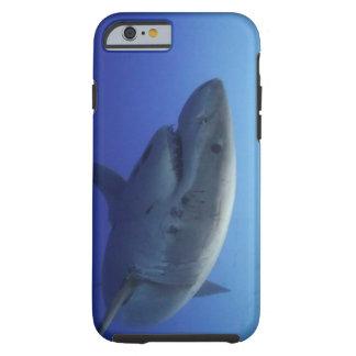ホホジロザメのiPhone 6の場合 ケース