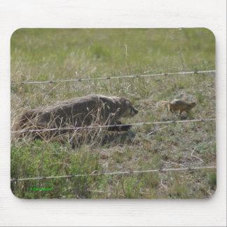 ホリネズミのマウスパッドの後のR0012アナグマ マウスパッド