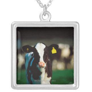 ホルスタインの子牛 シルバープレートネックレス