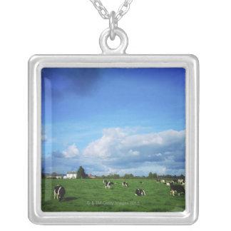 ホルスタインの牛はThurles、Coに近づきます シルバープレートネックレス