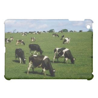 ホルスタインのcle、アイルランド iPad miniケース