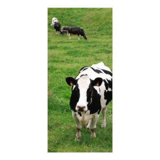 ホルスタイン牛 ラックカード
