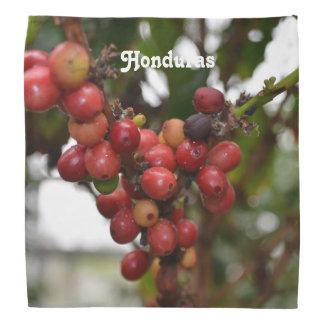 ホンジュラスのコーヒー豆 バンダナ