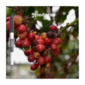 ホンジュラスのコーヒー豆 ホワイトボード