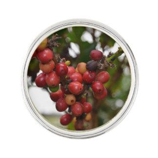 ホンジュラスのコーヒー豆 ラペルピン