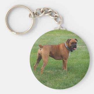 ボクサー犬 キーホルダー