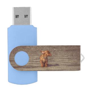 ボスは振れます USBフラッシュドライブ