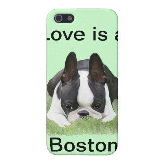 ボストンテリアの子犬の休息 iPhone 5 COVER