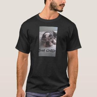 ボストンテリアの衣服 Tシャツ