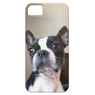 ボストンテリアのiPhoneの場合5c iPhone SE/5/5s ケース