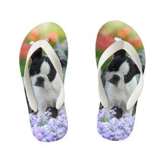 ボストンテリア犬のかわいい子犬の動物の写真-子供 キッズビーチサンダル
