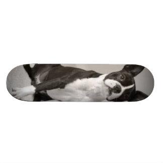 ボストンテリア犬のスケートボード オリジナルスケートボード