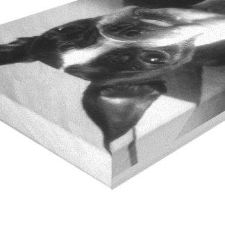 ボストンテリア犬の芸術 キャンバスプリント