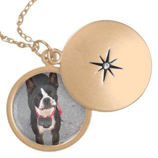 ボストンテリア犬 ゴールドプレートネックレス