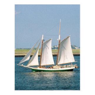 ボストン港のヨット ポストカード