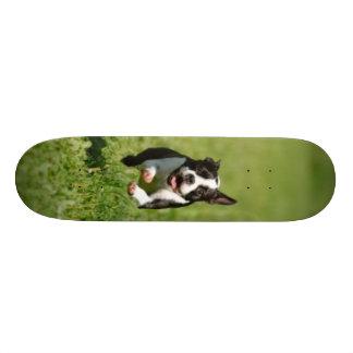ボストン連続したスケートボード スケボーデッキ