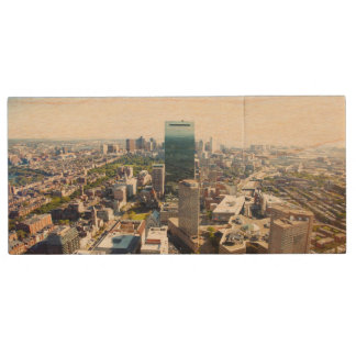 ボストン2の空中写真 ウッドUSBフラッシュドライブ