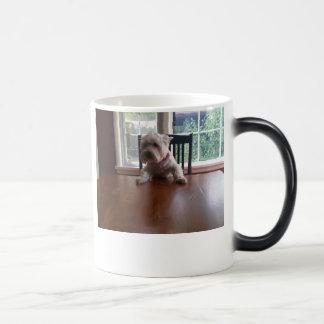 ボス モーフィングマグカップ