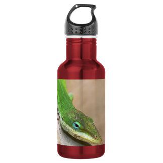 ボトルコレクション-ハ虫類/トカゲ ウォーターボトル