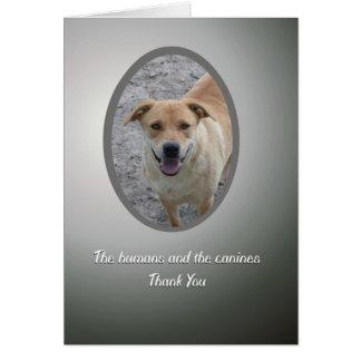 ボランティアはの犬の救助感謝していしています カード