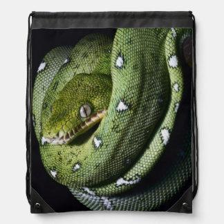 ボリビアの緑の木のヘビのエメラルドのボア ナップサック