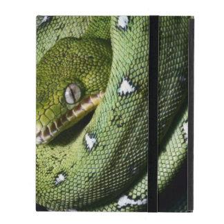 ボリビアの緑の木のヘビのエメラルドのボア iPad カバー