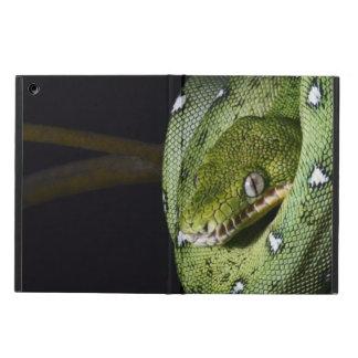 ボリビアの緑の木のヘビのエメラルドのボア iPad AIRケース