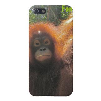 ボロネオのオランウータン iPhone 5 COVER