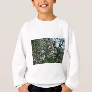 ボロネオのテングザル スウェットシャツ