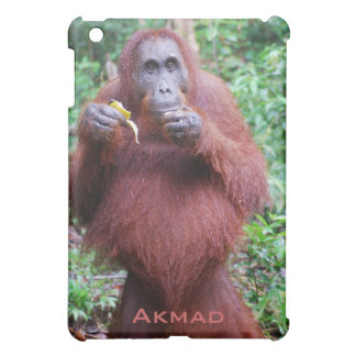 ボロネオの雨林で妊娠したAkmadのオランウータン iPad Mini カバー