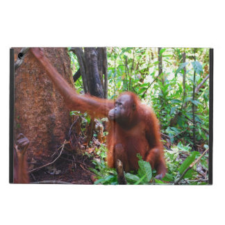 ボロネオの雨林のオランウータンの赤いサル iPad AIRケース