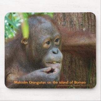 ボロネオの雨林のマルコムのオランウータン マウスパッド