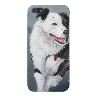 ボーダーコリーのデザインとのI 4 iPhone 5 CASE