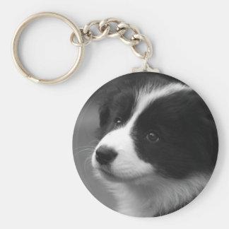 ボーダーコリーの子犬 キーホルダー