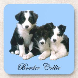 ボーダーコリーの子犬 コースター