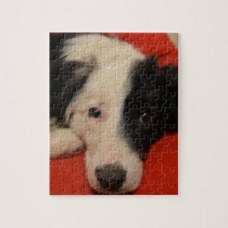 ボーダーコリー犬 ジグソーパズル