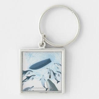 ボートを調べているイルカのイラストレーション キーホルダー