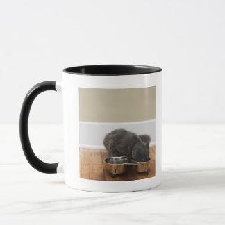 ボールからの猫の食べ物 マグカップ