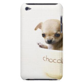 ボールのチワワの子犬(収穫される) Case-Mate iPod TOUCH ケース