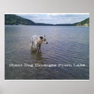 ポスターは湖から、巨大な犬現れます ポスター