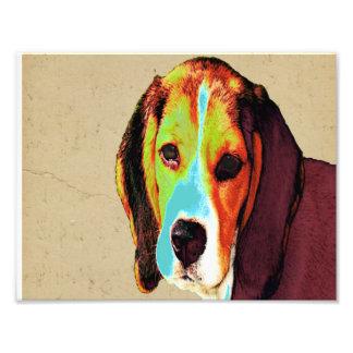 ポップアートはビーグル犬を好みます フォトプリント