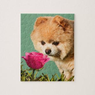 ポメラニア犬およびバラのパズル ジグソーパズル