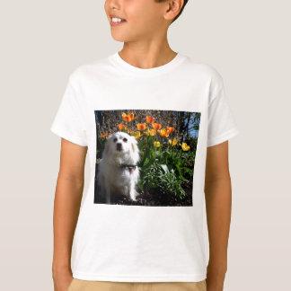 ポメラニア犬のチューリップ Tシャツ