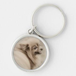 ポメラニア犬の写真-夢みるようなPom キーホルダー