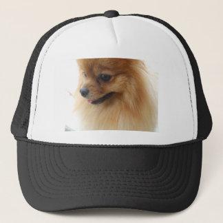 ポメラニア犬の恋人 キャップ