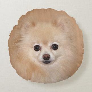 ポメラニア犬の顔 ラウンドクッション