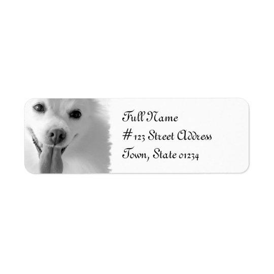 ポメラニア犬犬の差出人住所の郵送物のラベル ラベル